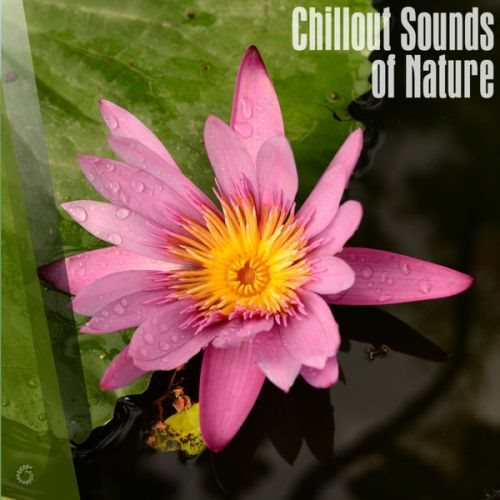 Chillout Sounds Of Nature 2018 скачать сборник в формате FLAC (Lossless)